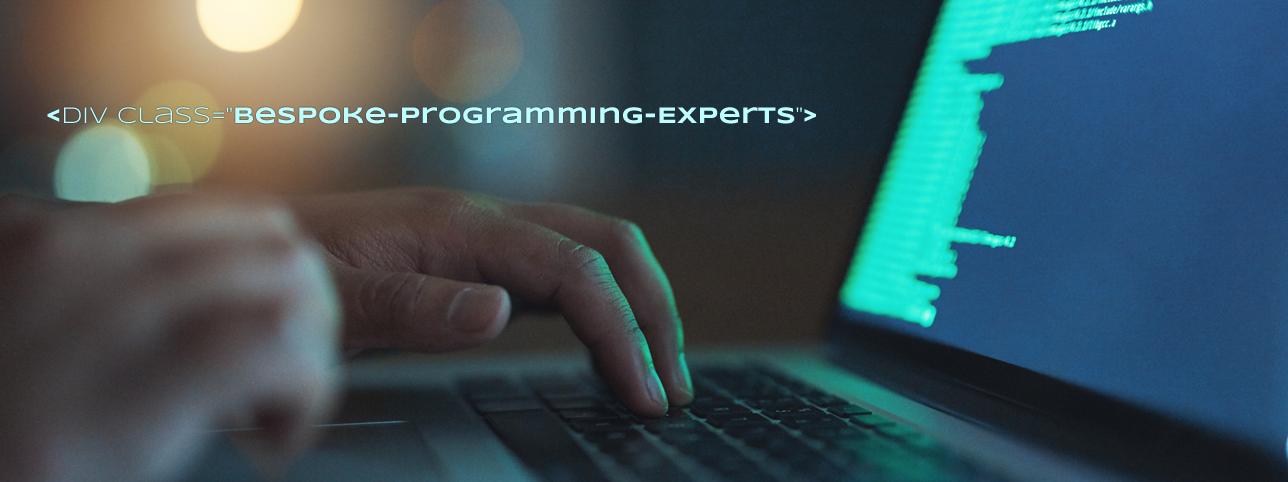 Bespoke Programming & Coding Experts